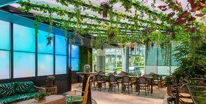 Hire Picnic Urban Food Park Flower Garden