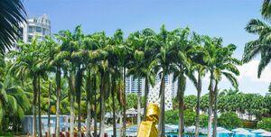 Hire W Singapore Sentosa Cove W Lawn