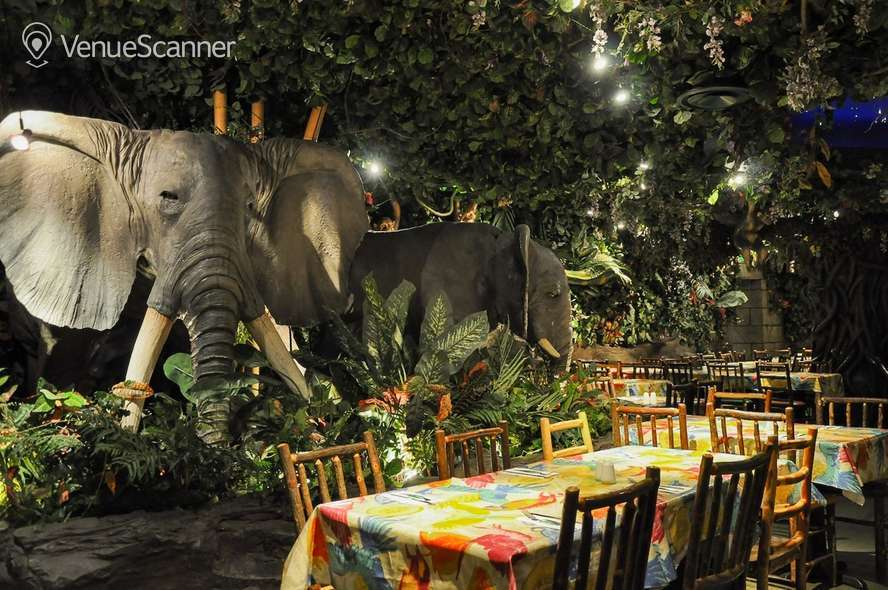 Hire Rainforest Cafe Butterfly Room 1