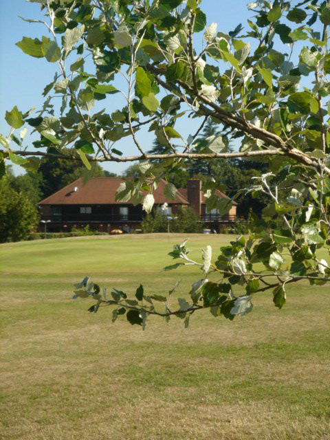 37+ Chartridge golf club wedding information