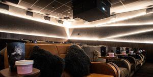 Everyman Cinema Cardiff, Screen 4