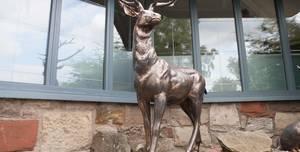 Best Western Braid Hills Hotel, The Buckstone