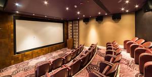The Roseate Reading, Cinema - Upstage Mini